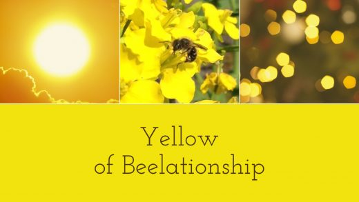 Yellow of Beelationship